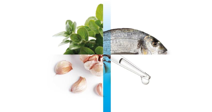 Balık Pazarazitlerine Karşı Doğal Çözüm ve Yüksek Başarı Oranı